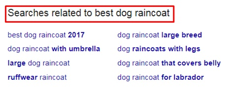 Additional related search queries